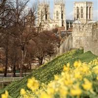 York Day Excursion