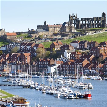 Whitby & Adensfield