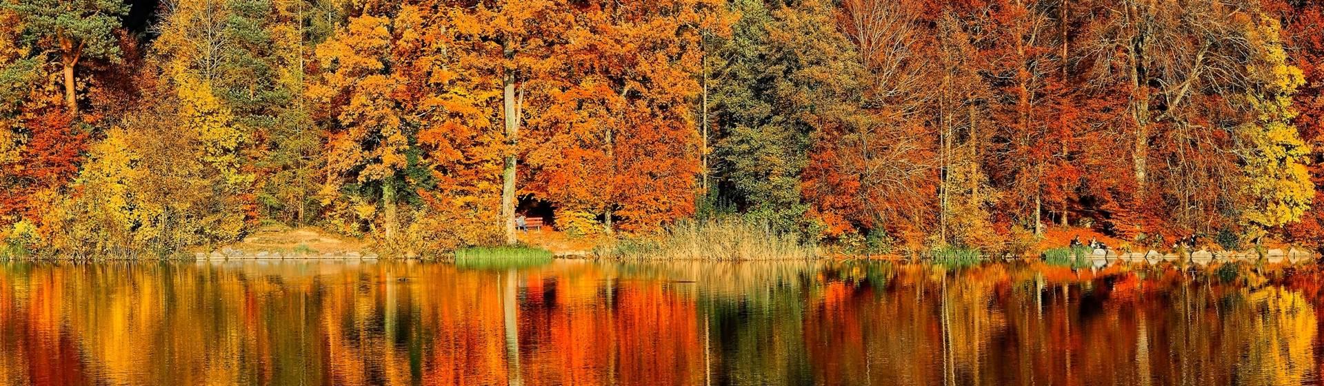October and November